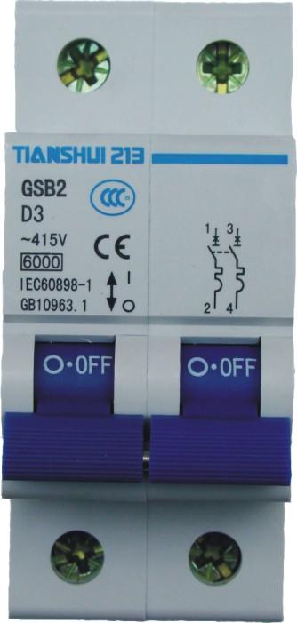 天水二一三GSB2-C16/2小型断路器